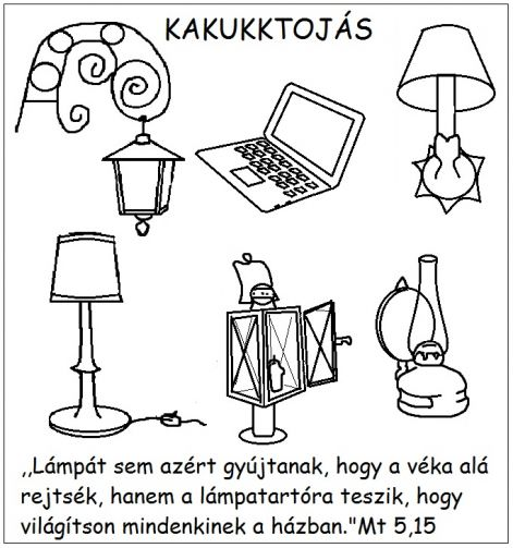 mt_515_kakukk.jpg